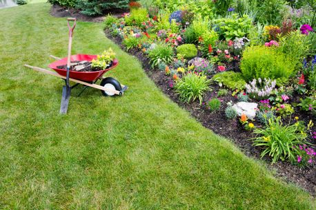 gardening services with wheelbarrow on grass